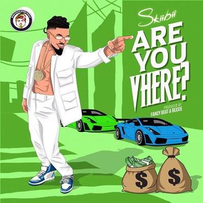 Skiibii - Are You Vhere (Are You There)